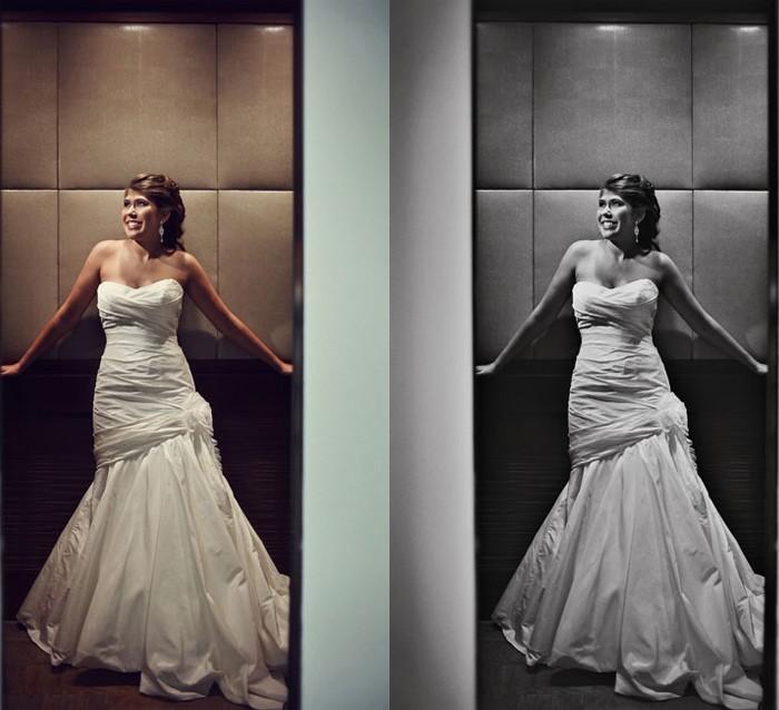 Palomar Bride