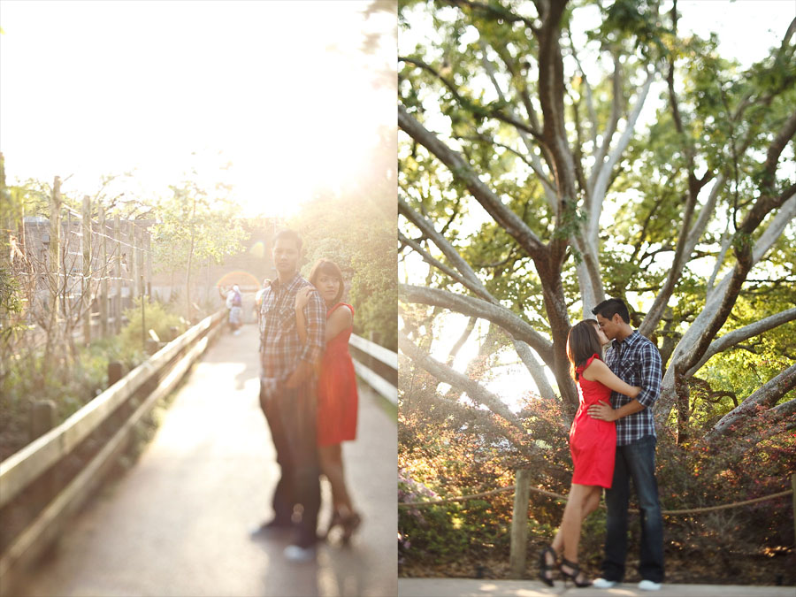 fun creative engagement session at houston zoo by dallas wedding photographer table4