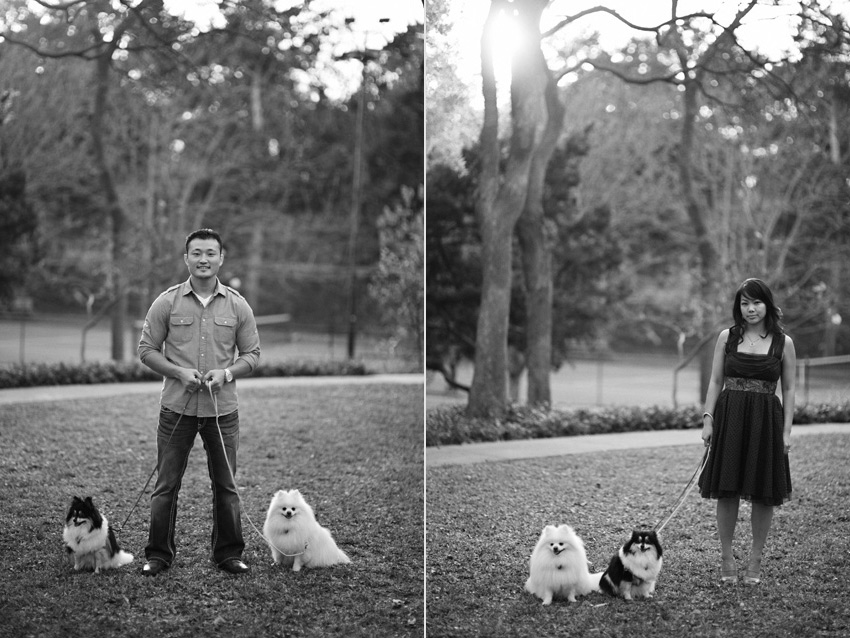 dallas park engagement photographer