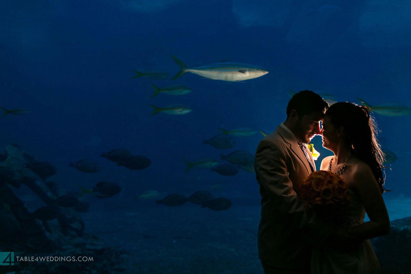 atlantis bahamas beach wedding during hurricane sandy