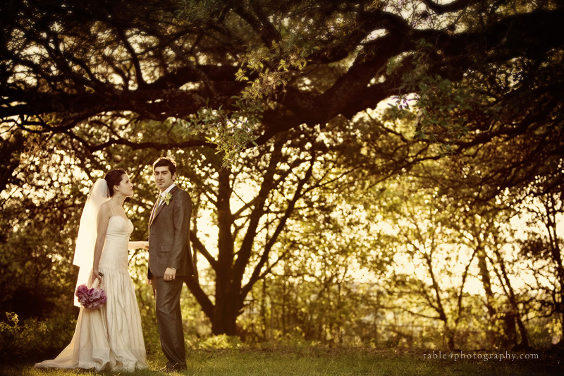 austin wedding photography, mercury hall wedding picture, outdoor wedding