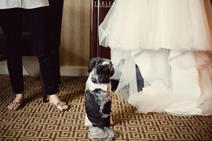 houston intercontinental wedding image