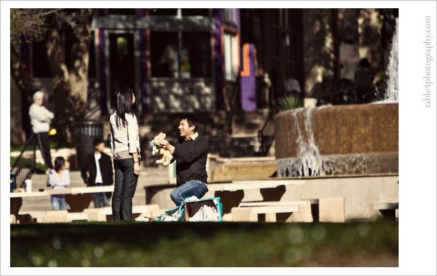 austin, tx arboretum engagement pictures