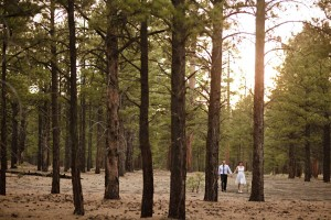 arizona pine trees engagement