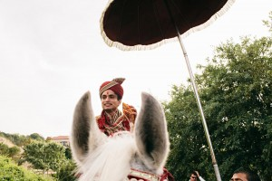 baraat horse indian wedding