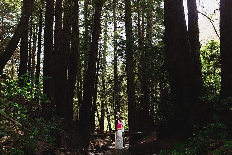 linda and ty big sur engagement photos, big su state park engagement, pfeiffer big sur photo, linda and ty, table4weddings by Table4 Weddings by Jason Huang, Table4.